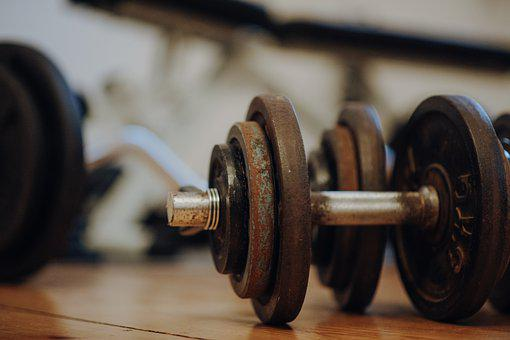 Dumbbell, Gym, Fitness, Bodybuilding, Exercise, Sport