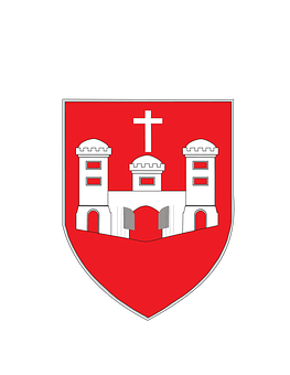 Limerick, County, Coat Of Arms, Irish, Ireland