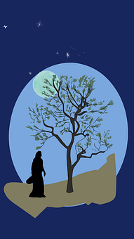 Man, Tree, Moon, Stars, Shooting Star, Silhouette