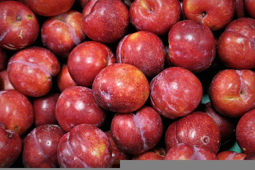 Plum, Fruit, Ripe, Healthy, Sweet, Vitamins, Fresh