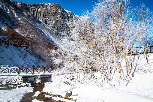 Snow, Weather, China, Northeast, Cold, Winter Wind