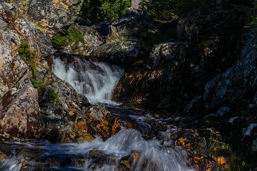 Waterfall, Stream, Forest, Rocks, Stones, Cascades