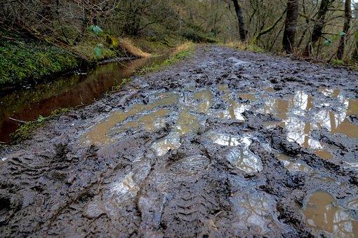 Mud, Muddy, Path, Wet, Water, Footprint, Quagmire