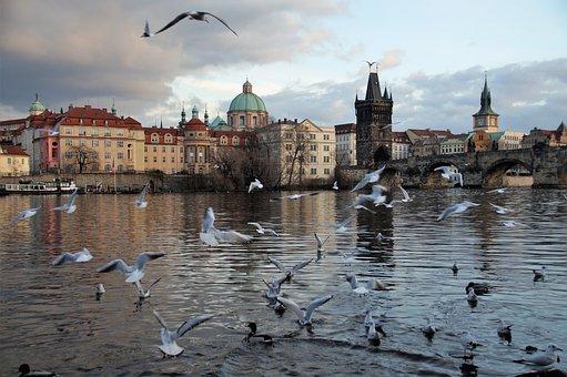 Prague, Charles Bridge, River, Vltava, Architecture