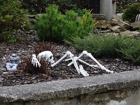 Bone, Skeleton, Helloween, Skull