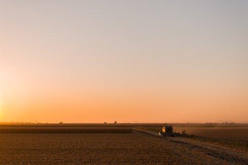 Farm, Tractor, Sunset, Dusk, Sunlight, Horizon, Sky