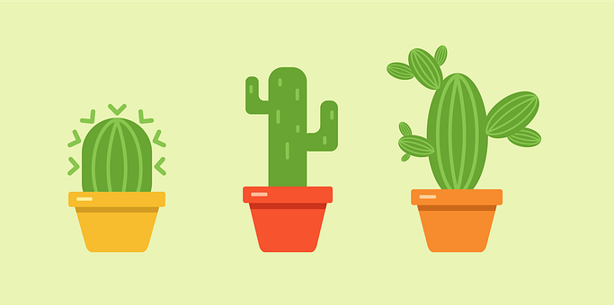 Cacti, Plants, Set Icon, Houseplants, Pots, Tropical