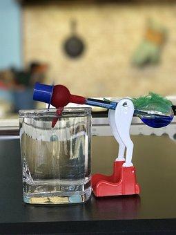 Glass, Kitchen, Bird, Thirsty, Thirsty Bird, Science
