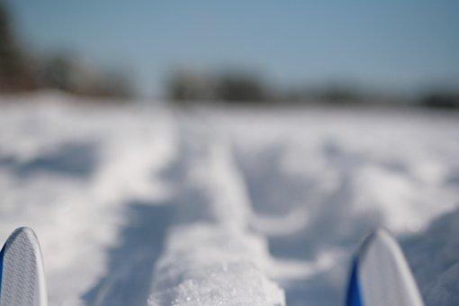 Cross Country Skiing, Ski, Nordic, Winter, Snow, Nature
