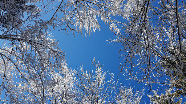 Snow, Sky, Winter, Nature, Trees, Partly Cloudy