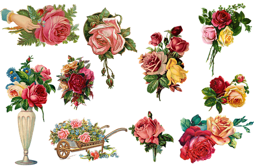 Vintage, Roses, Flowers, Collection, Colorful, Red