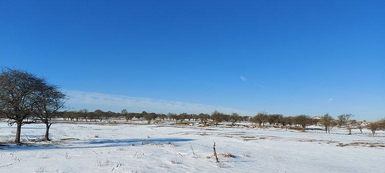 Winter, Waterworks Dunes, Snow, Sun, Landscape, Nature
