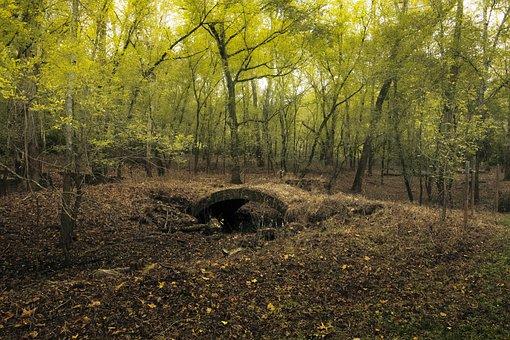 Footbridge, Forest, Arch, Stone, Trees, Leaves, Bridge