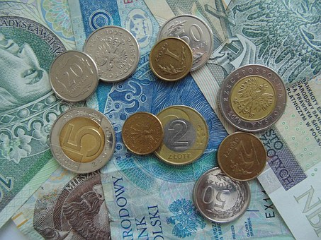 Money, Polish, Cash, Banknote, Zloty, Coins, Pln