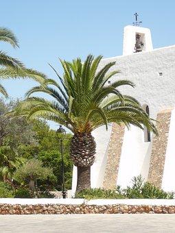 Palm, Vacations, Beach Sea, Ibiza, Mediterranean