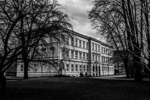 School, Krnov, Park, Black And White, Trees, Building