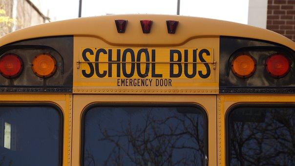 Bus, School, School Bus, Yellow, Transportation