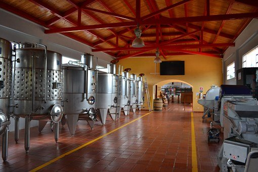 Wine, Production, Winery, Drink, Alcohol, Vine