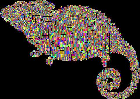 Chameleon, Typography, Karma, Karma Chameleon, Animal