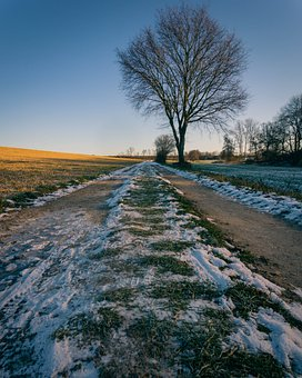 Snow, Blue Sky, Field, Landscape, Sky, Wintry, Winter
