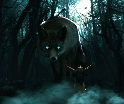 Fox, Woods, Forest, Nature, Animal, Wildlife, Fantasy