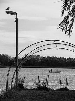 Black And White, Lake, Boat, Bird, One Person, Calm