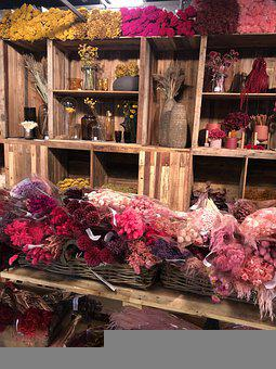 Shop, Flowers, Dried Flowers, Florist