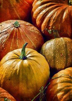 Pumpkin, Autumn, Halloween, Vegetables, Fall, Soup