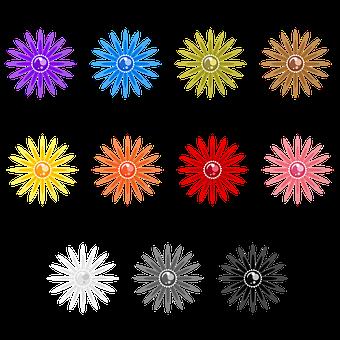 Flowers, Vegetal, Botanic, Plant, Colorful, Pearls