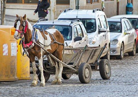Horse, Wagon, Road, Cobblestone, Cart, Draft Horse