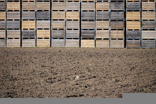 Boxes, Wood, Rows, Box, Poster, Agriculture