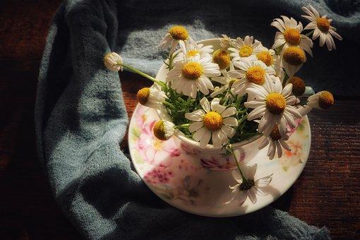 Daisies, Flowers, Vase, Flower Vase, Wildflowers