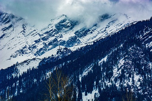 Mountain, Trees, Snow, Clouds, Fog, Winter, Cold