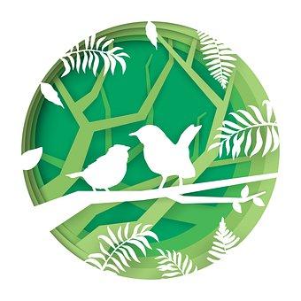 Birds, Paper Cut, Paper, Hummingbird, Cutting