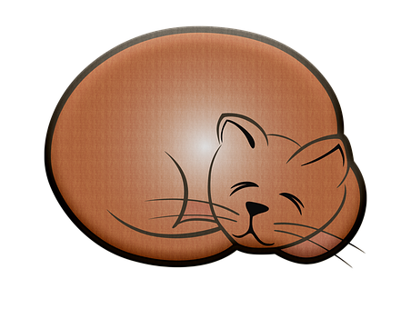 Cat, Pet, Sleeping, Sleeping Cat, Kitty, Sleep, Kitten