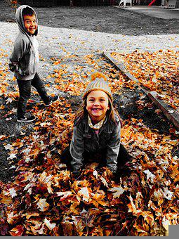 Kids, Playing, Fall, Leaves, Fallen Leaves