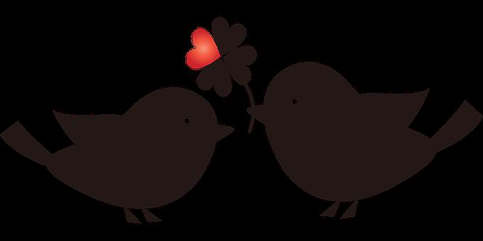 Love Birds, Clover, Silhouette, Bird Silhouettes, Cute