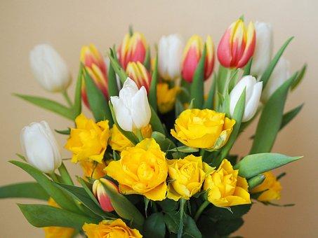 Tulip, Rose, Birthday, Bouquet, Flowers, Flower, Love