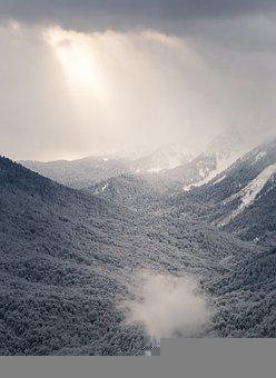 Mountains, Trees, Snow, Winter, Partly Cloudy