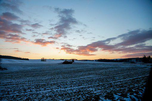 Field, Snow, Sunset, Winter, Silhouette