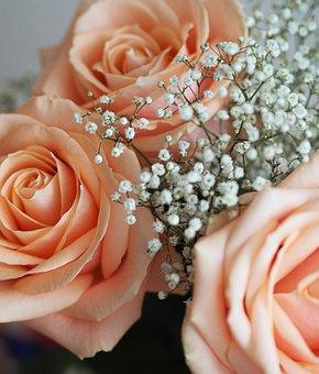 Rose, Birthday, Bouquet, Flowers, Flower, Love, Romance