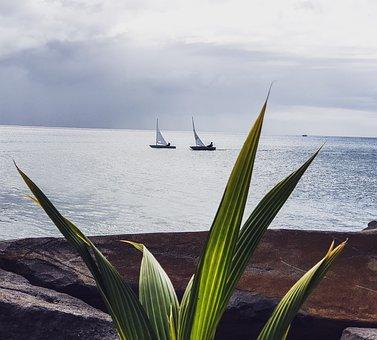 Boat, Sea, Ocean, Water, Sky, Horizon, Beach, Blue, Zen