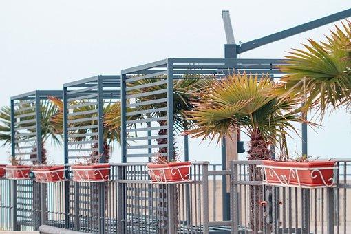 Palms, City, Mediterranean, Croatia, Beach, Tourism