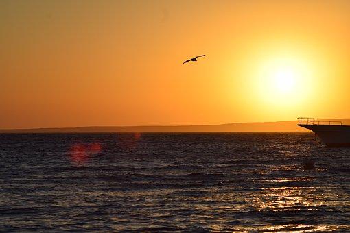 Sunset, Sea, Sky, Sunrise, Sun, Landscape, Beach