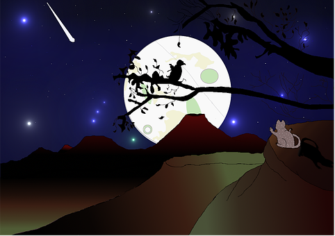 Cat, Moon, Tree, Branches, Hill