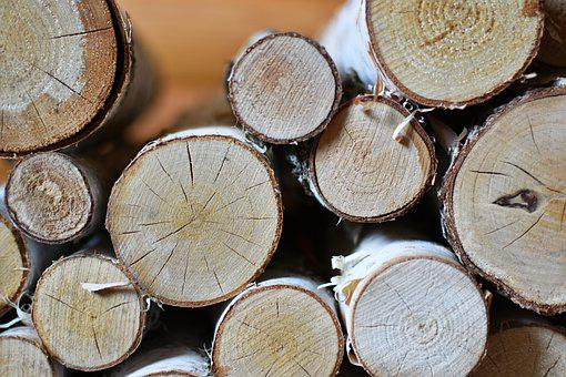 Firewood, Birch, Logs, Tree, Branches, Cut, Heap
