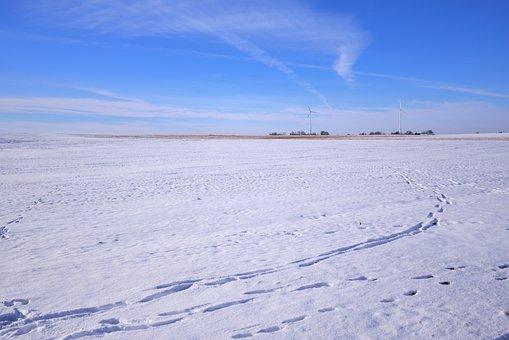 Landscape, Winter, Snow, Wintry, Nature, Snow Landscape