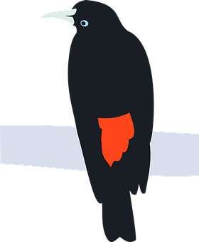 Bird, Cacique, Cacicus, Perched, Nature, Animal