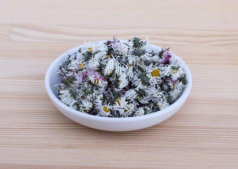 Daisy, Tee, Medicinal Herb, Dried, Flowers, Naturopathy