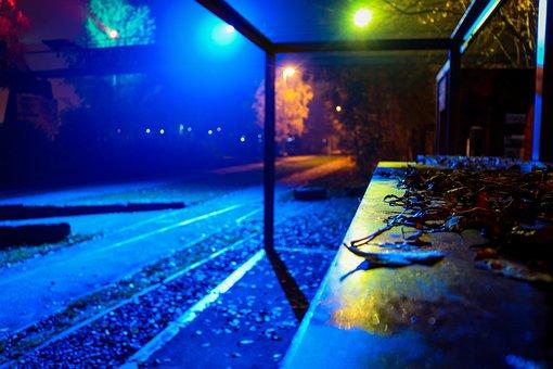 Night, Lights, Park, Evening, Lighting, Party